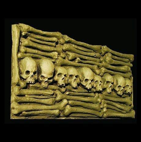 HOD403-Skeletal-Wall-Panel1-461x464