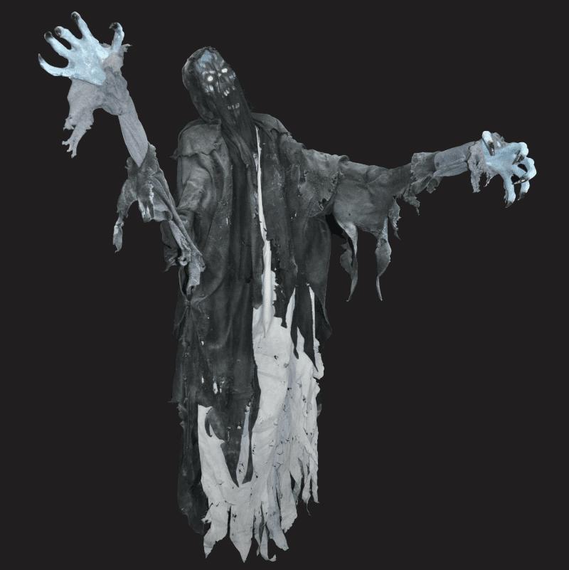 zmb790 floating dementor
