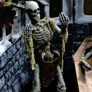 Free Standing Skeleton
